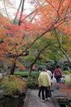 2015GE植物園1.jpg